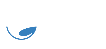 Native Surfboards
